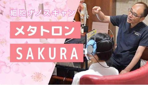 メタトロンsakura